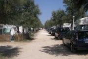 Camping La Pineta