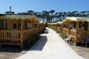 Camping Paradiso Viareggio