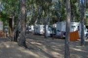 Camping Cigno Bianco