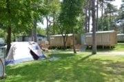 Camping Mare Pineta Italie