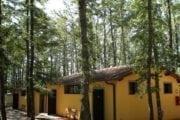 Camping Orlando in Chianti Cavriglia