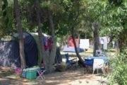 Camping Sos Flores
